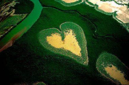 El corazón de Voh