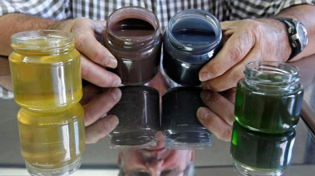 Abejas producen miel de colores después de comer M&M's