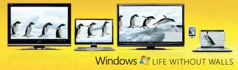 Pingüinos en un anuncio de Windows