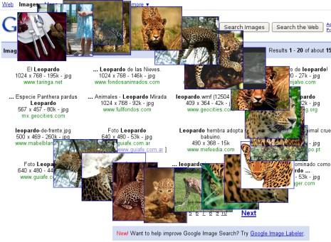 Google Images en movimiento
