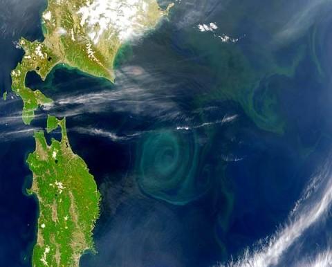La gran mancha de basura del Océano Pacífico